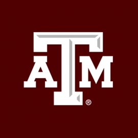 Texas A&M University (TAMU) Scholarship programs