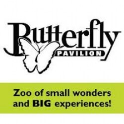 Butterfly Pavilion Internship programs
