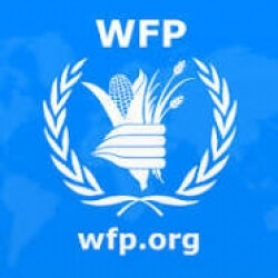 World Food Programme Internship programs