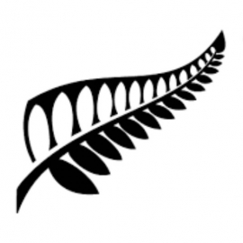 New Zealand Government Scholarship programs