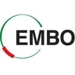 European Molecular Biology Organization (EMBO)