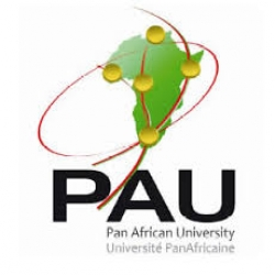 Pan-African University Scholarship programs