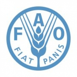 Food and Agriculture Organization (FAO) Internship programs