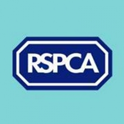 Royal Society for the Prevention of Cruelty to Animals Scholarship programs