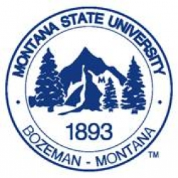 Montana State University Course/Program Name