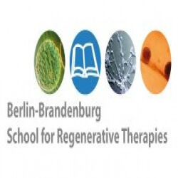 Berlin-Brandenburg School for Regenerative Therapies (BSRT) Scholarship programs