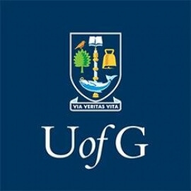 University of Glasgow Scholarship programs