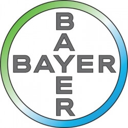 The Bayer foundation