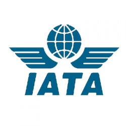 International Air Transport Association Internship programs
