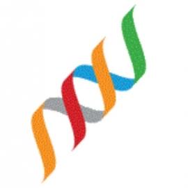 Boehringer Ingelheim Fonds (BIF) Scholarship programs