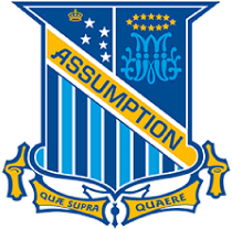 Assumption College, Kilmore Scholarship programs