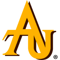 Adelphi University  Scholarship programs