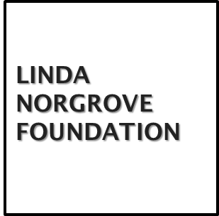 Linda Norgrove Foundation Scholarship programs